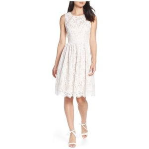 NWOT Eliza J Lace Fit and Flare Dress